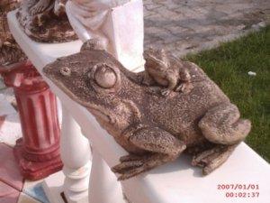 İkili Kurbağa Maketi