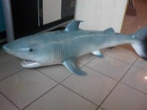 Köpek Balığı Heykelleri