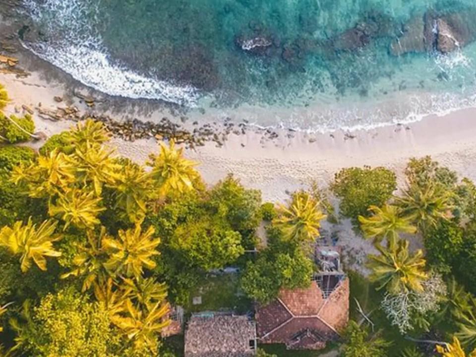 Civil-Aviation-Authority-of-Vanuatu-single-post