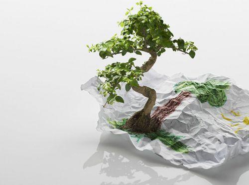 5 científicos que cambiaron nuestra forma de ver la naturaleza