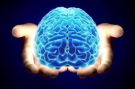 El cerebro humano es impresionante