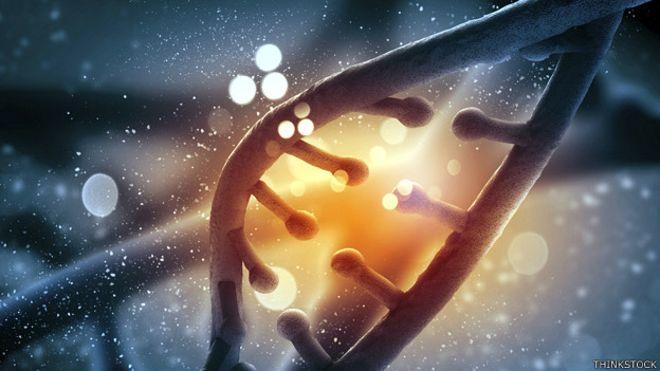 Los científicos analizaron el ADN de 589.306 personas para detectar entre ellos resistencia a 584 enfermedades hereditarias.
