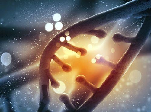 """El ADN de los """"superhéroes"""" que mantiene a raya las enfermedades"""