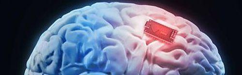 No sólo dieta y ejercicio: qué hacer para tener un cerebro joven