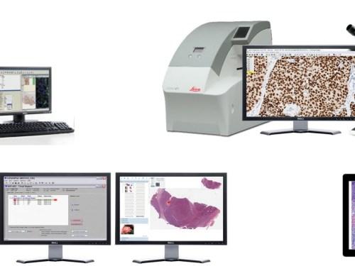 ¿Qué es la patología digital?
