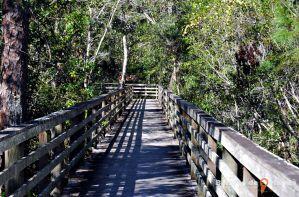 Shingle Creek Hunters Creek