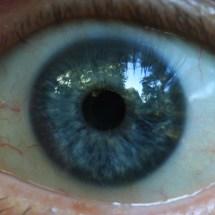 Auge_quadratischer_Ausschnitt