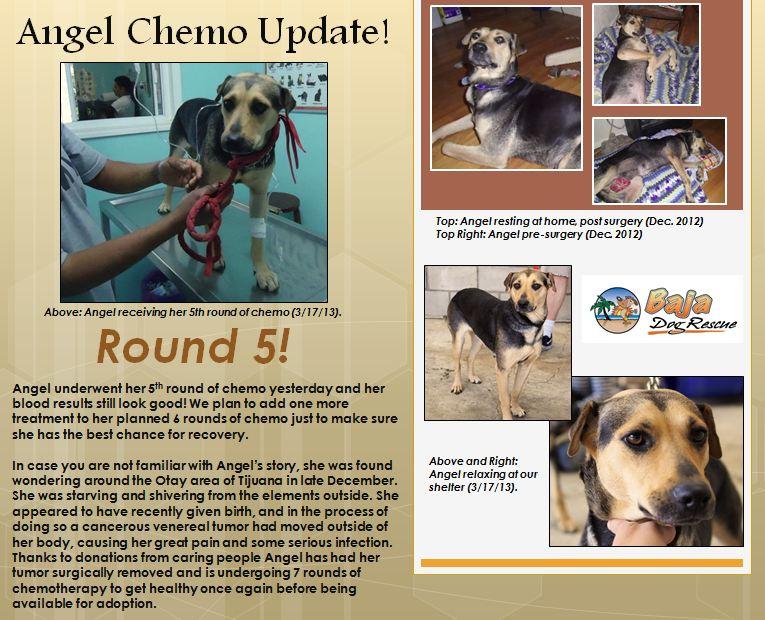 3-18 Angel Update