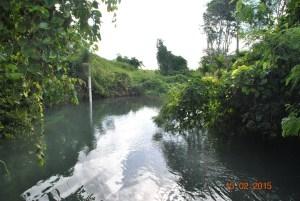 Burton's Hole