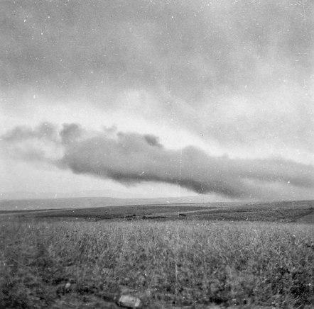 Figura-03-humo-1938-Walter