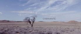 """""""Cabriante"""" cómo transformar el dolor en belleza"""