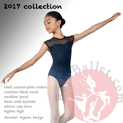 2017 Collection L19