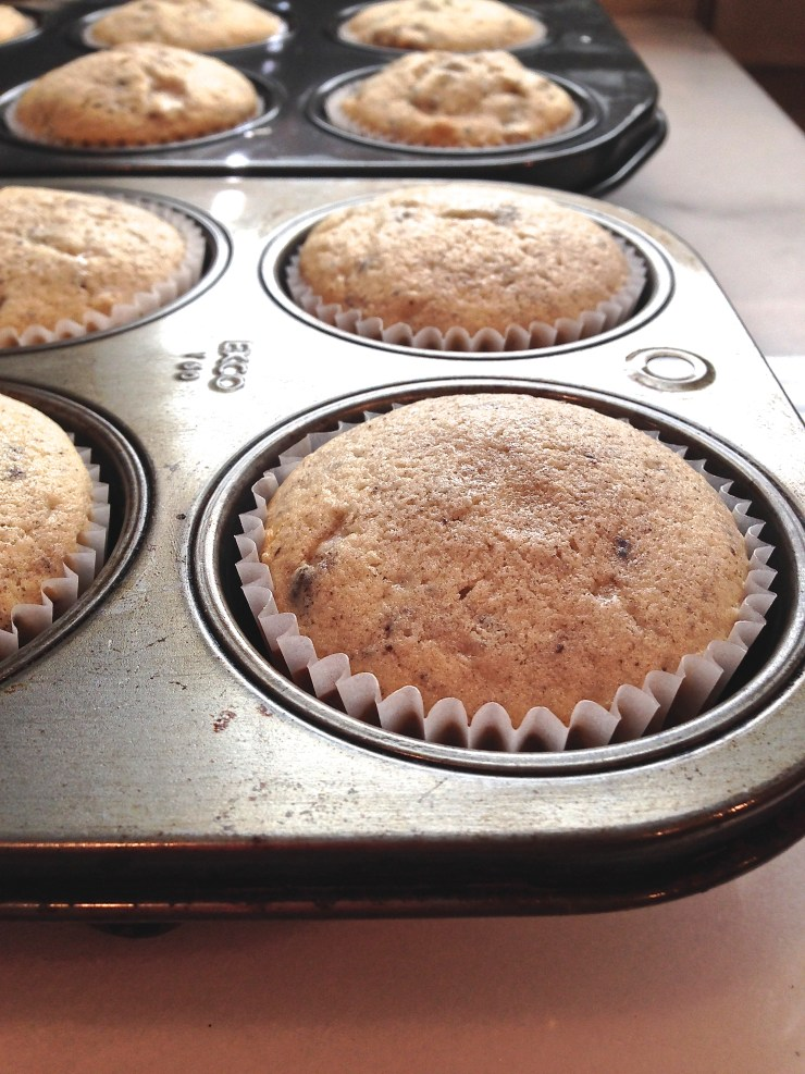 Cupcakes out of the oven, close up in muffin tins
