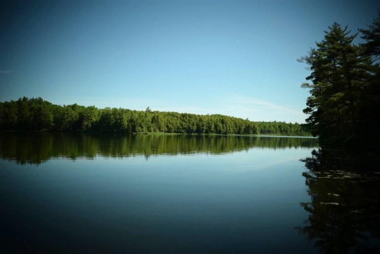 Giles-Pond.jpg