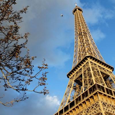 Abroad Bites: Paris, France