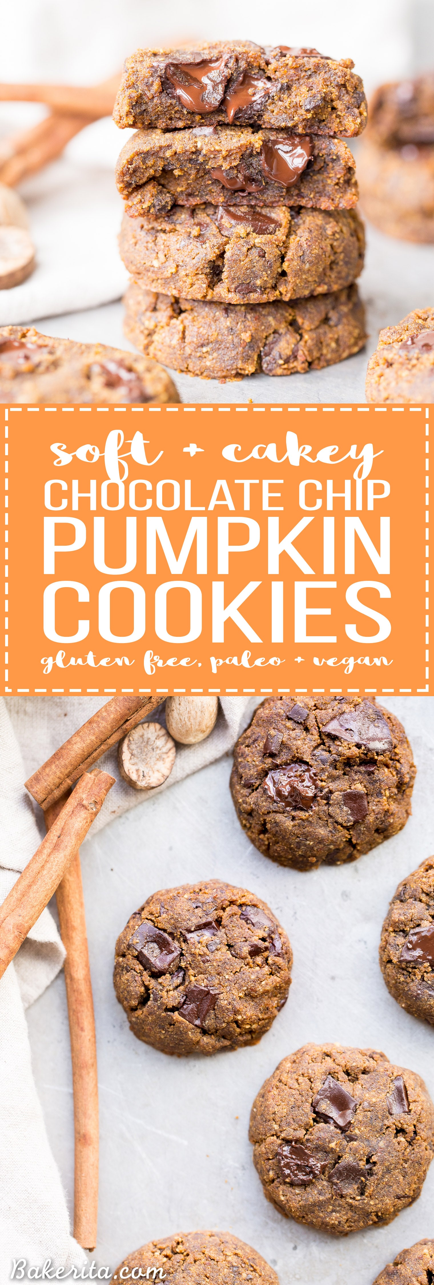 These Soft Chocolate Chip Pumpkin Cookies are a cakey and delicious spiced cookie that's loaded with chocolate! If you like softer cookies, you'll adore these gluten-free, paleo + vegan pumpkin cookies.