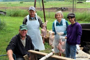 Chicken Processing in Northern Michigan