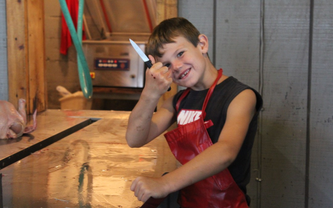 Fun in the shop: meet the chicken processing team