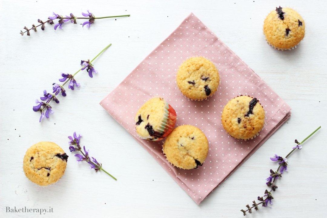 Muffin ai mirtilli e avena