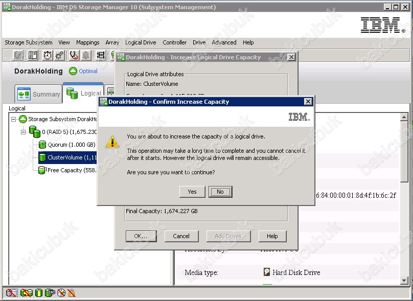 ds storage manager 10.86