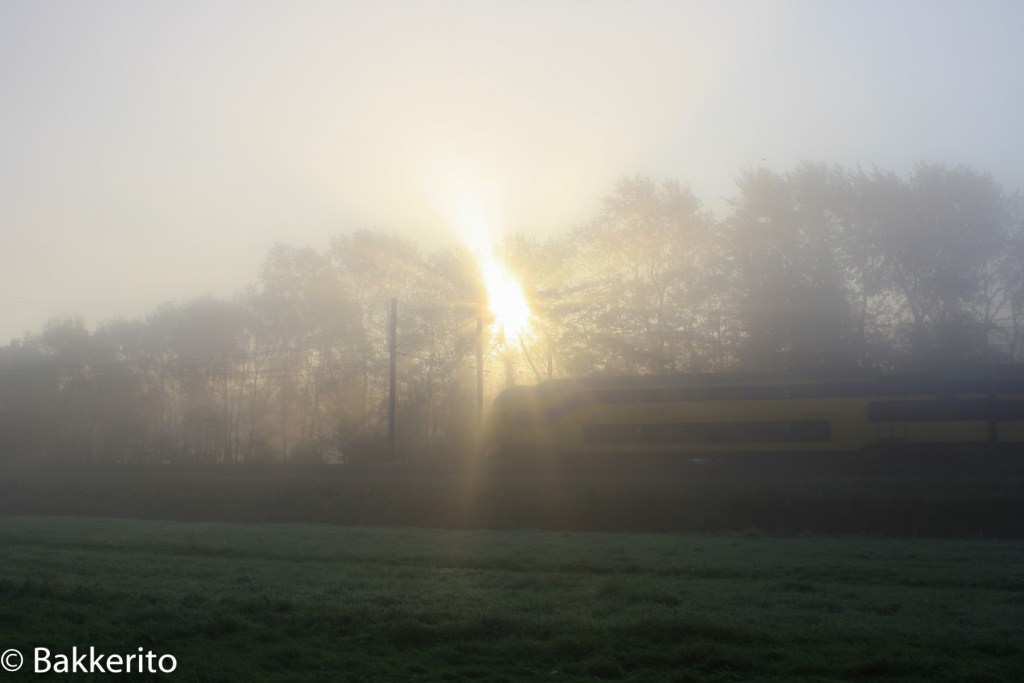 Foggy train