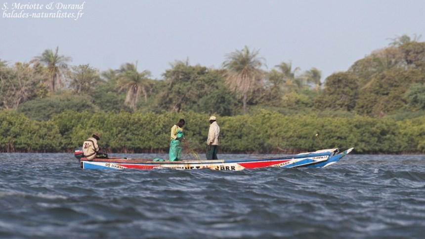 Pêcheurs dans le delta du Sine Saloum