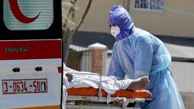 """صورة الصحة بغزة: تسجيل 7 وفيات و735 إصابة جديدة بفيروس """"كورونا"""""""