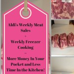 Aldi's Meat Sales + Weekly Freezer Cooking = $$$