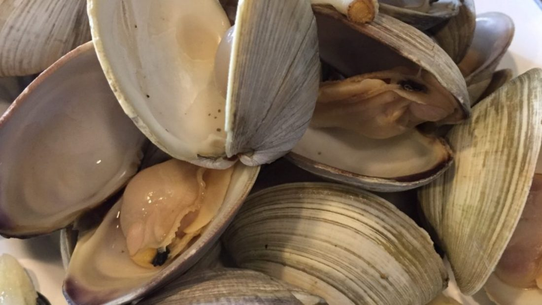 Creamed Clam