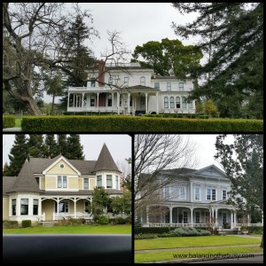 Modern Craftsman homes Sonoma, CA