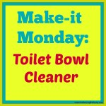 make-it monday: toilet bowl cleaner