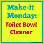 make-it monday: toilet bowl cleaner