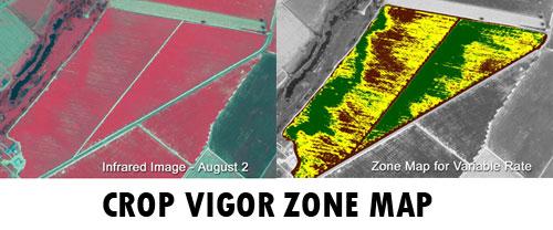 crop-vigor-zone-map
