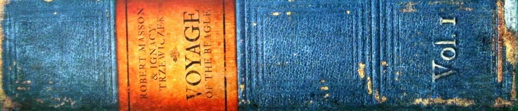 """Costola del """"libro"""""""