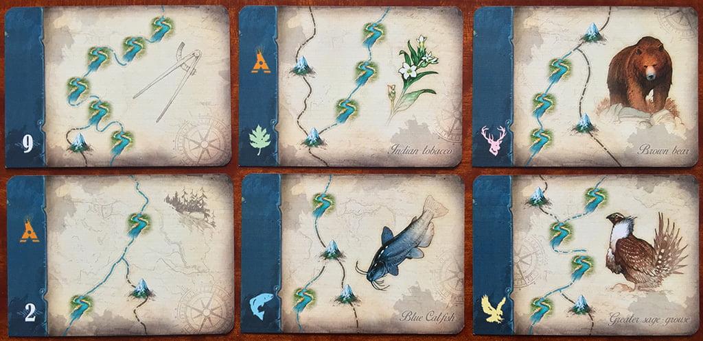 6 esempi di carte scoperta scientifica: