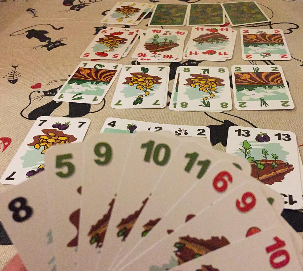 La partita a Vege Tables richiede decisamente più spazio, perché deve ospitare ben 16 serie di carte.