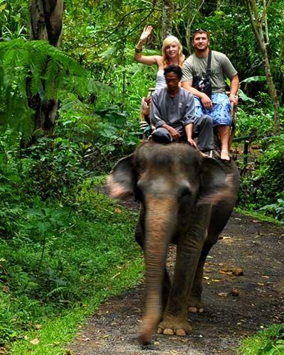 balade-elephant