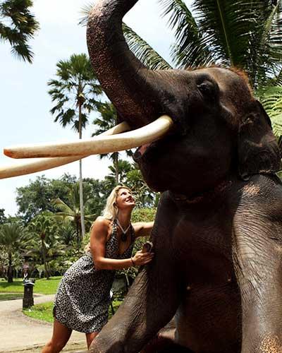 laver le gros elephant de bali