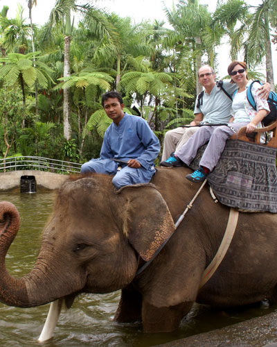 elephant-bali-1