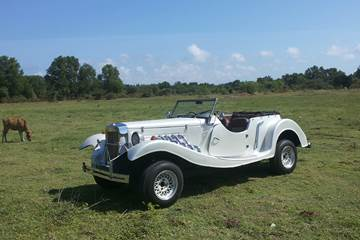 Bali Car Charter With Driver - Marvia - Link to Page 260217