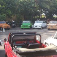 Bali Car Charter With Driver - VW Safari
