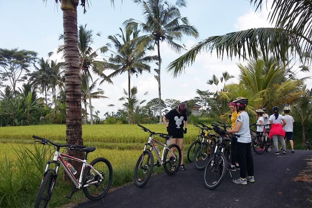 Bali Malet Eco Cycling Tour - Gallery 03160217