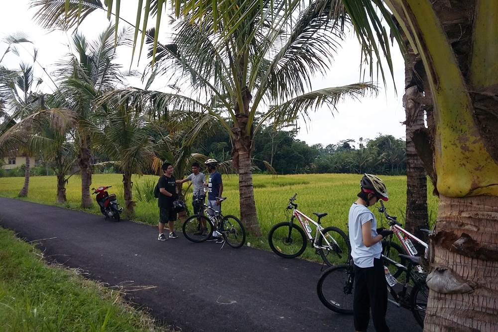 Bali Malet Eco Cycling Tour - Gallery 04160217