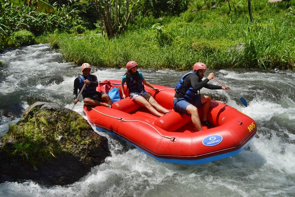 Bali White Water Rafting Tours Telaga Waja River - Gallery 08010217
