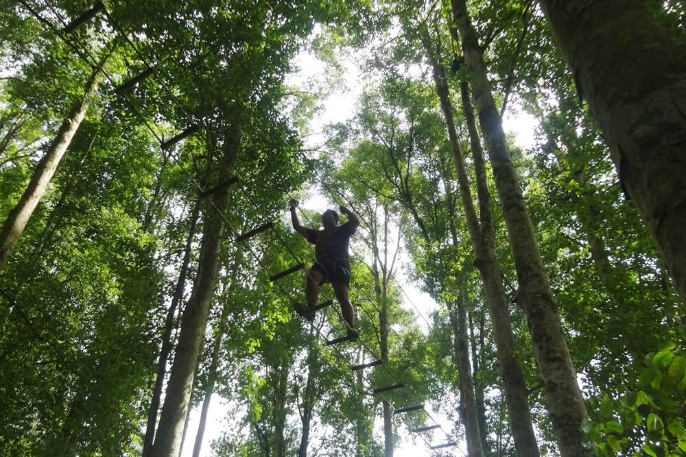 Bali Treetop Bedugul Adventure Tour - Gallery 01050317