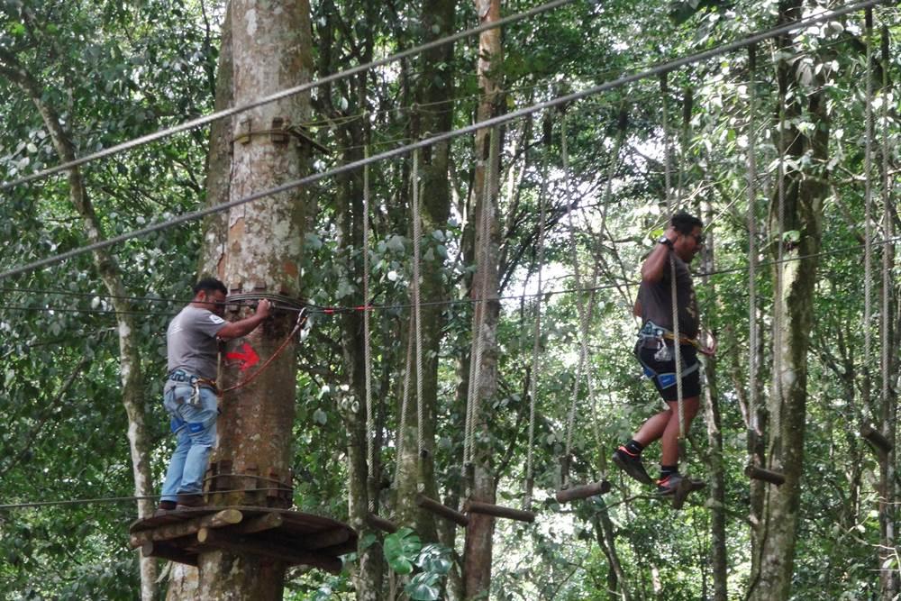 Bali Treetop Bedugul Adventure Tour - Gallery 02050317