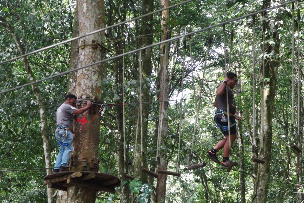 Bali Treetop Bedugul Adventure Tour - Gallery 02050317