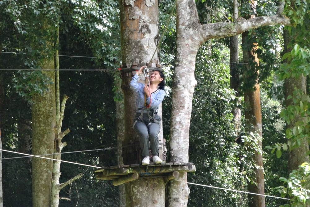 Bali Treetop Bedugul Adventure Tour - Gallery 03050317