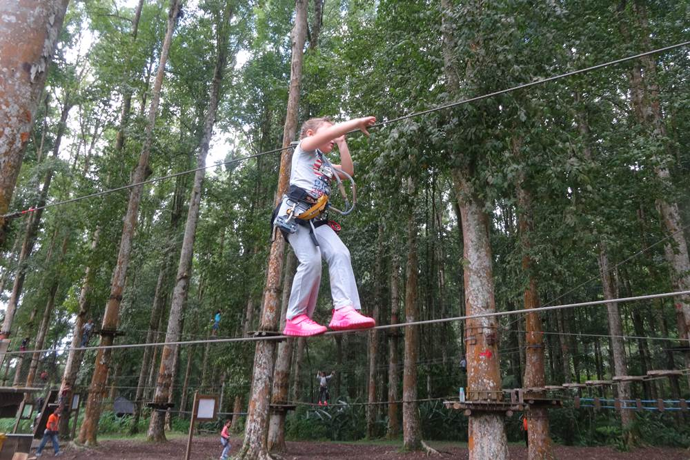 Bali Treetop Bedugul Adventure Tour - Gallery 05050317