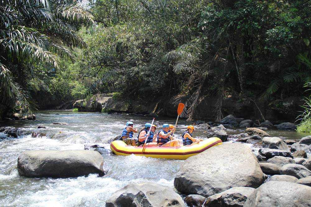 Bali White Water Rafting Tours Ayung River - Gallery 04010217